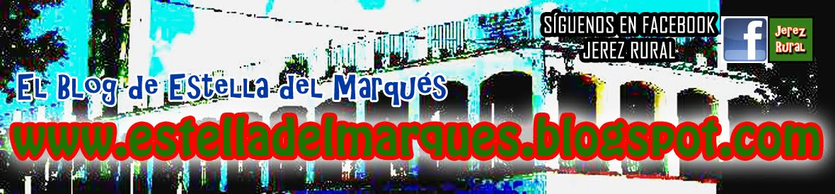 estelladelmarques.blogspot.com