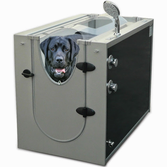 Awesome Dog Products and Gadgets (15) 4