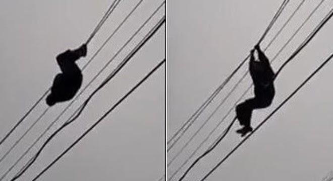 Clip thanh niên ngáo đá đu dây diên như Tarzan