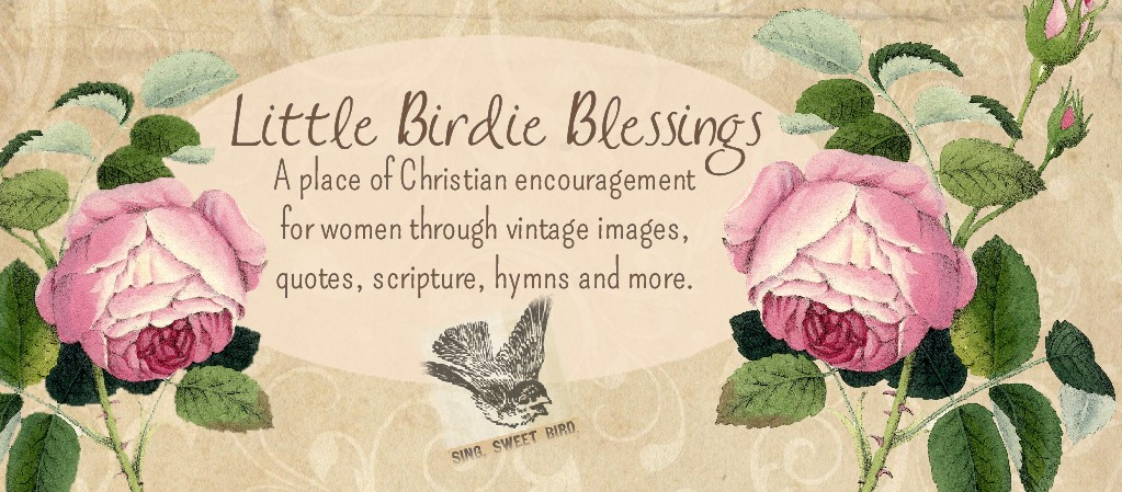 Little Birdie Blessings