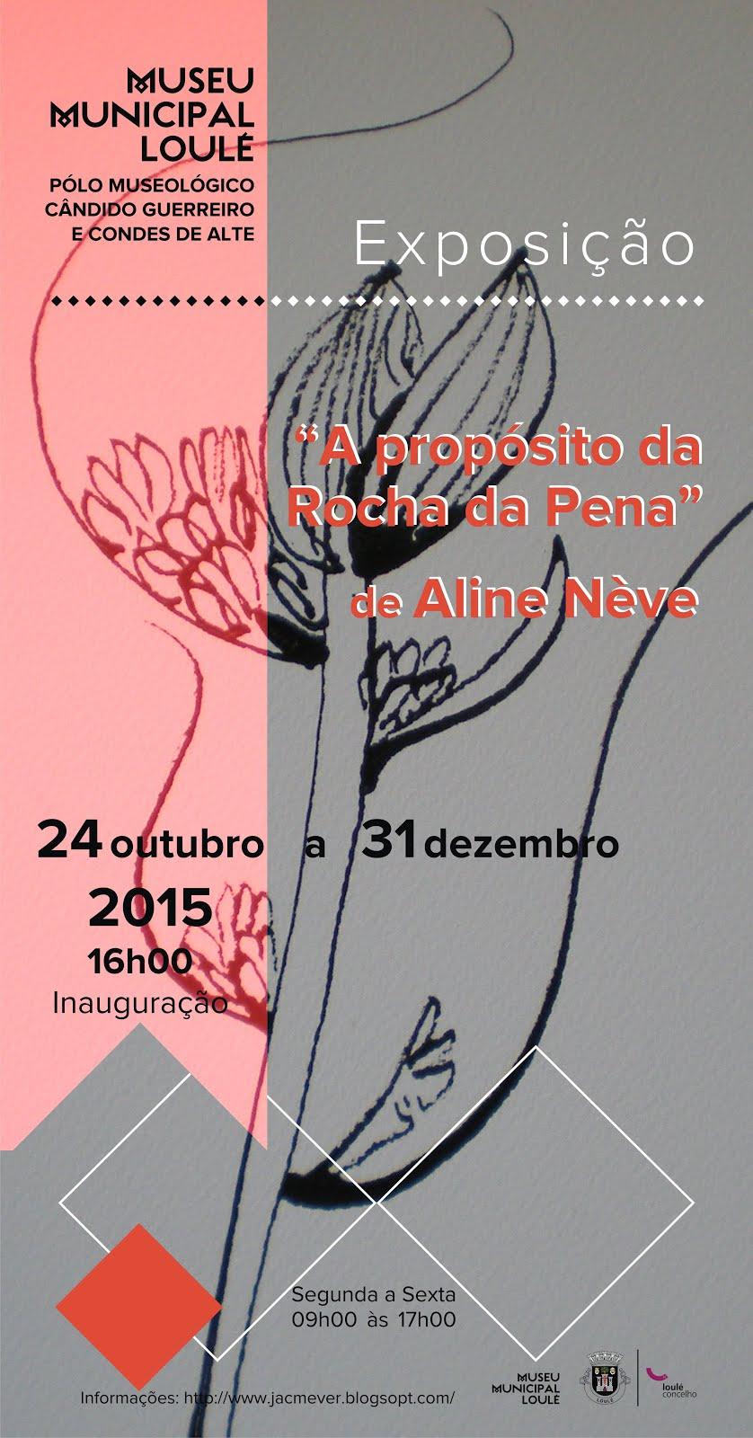 Exposiçao 2015 Alte