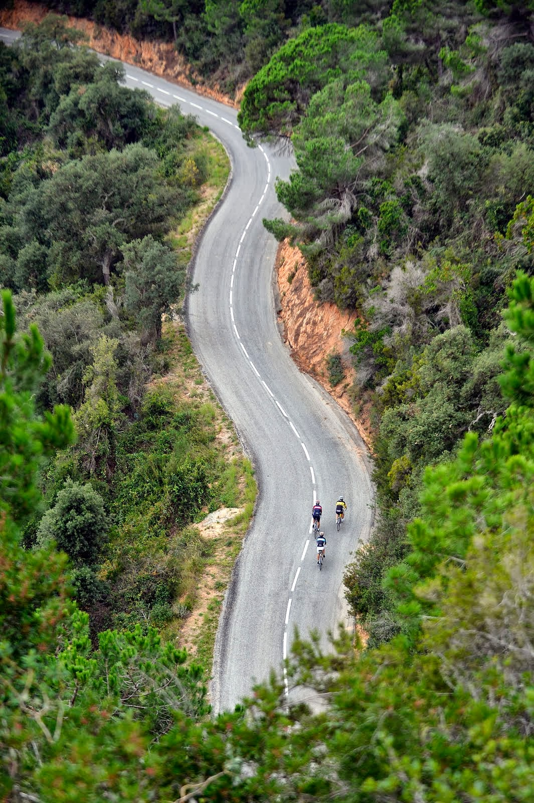 Visit our website! www.roadcycling.barcelona !!