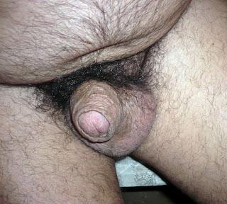Amateur Porn - sexygirl-P1120731-776541.JPG