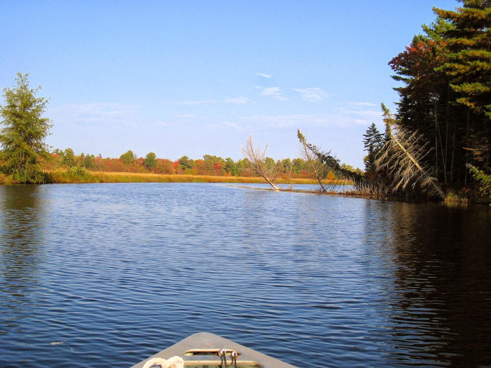 Touring the Tahquamenon River