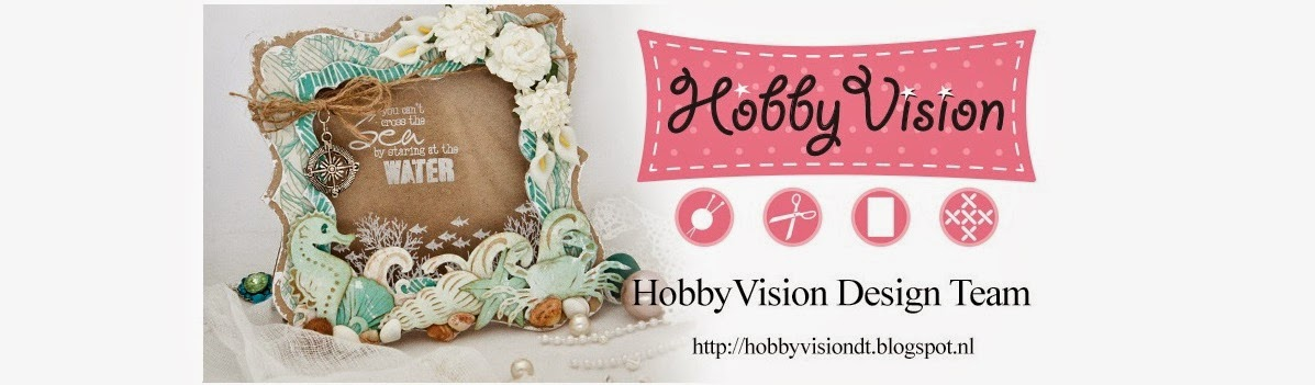 HobbyVision Design Team