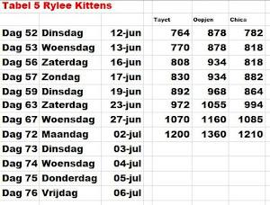 Gew Tabel 5 Rylee Kittens