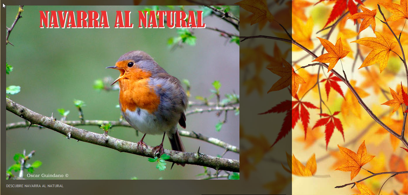 Navarra Natural