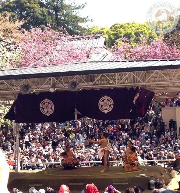 Outdoor sumo in spring, Tokyo