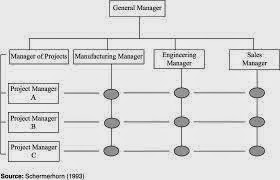 caterpillar management structure essay example