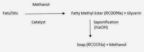 Fatty Methyl Ester Process