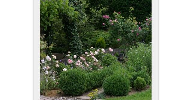 ein schweizer garten eden rose the fairy. Black Bedroom Furniture Sets. Home Design Ideas