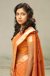 Amala Paul latest new cute looking tradition saree photos wallpapers