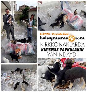 KOLAYMAMA KIRKKONAKLAR'DA KİMSESİZ YAVRULARIN YANINDAYDI!!!