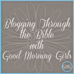 Blogging Through the Bible