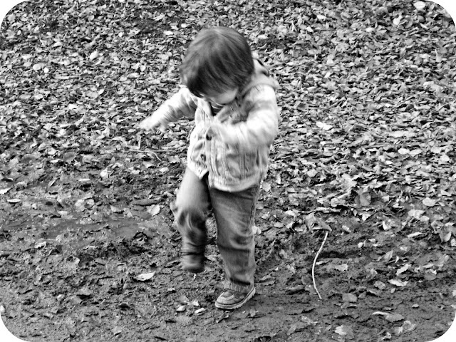 Small boy stomping muddy puddle autumn leaves fall