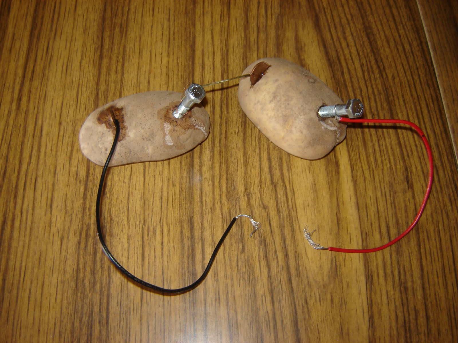 potato battery science project Which potato makes a better battery science fair inspiration  my son decided that he wanted to create a potato battery,  kid done a science fair project this.