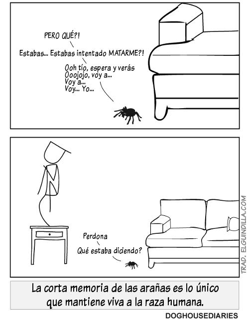 debilidad de las arañas - imagenes graciosas