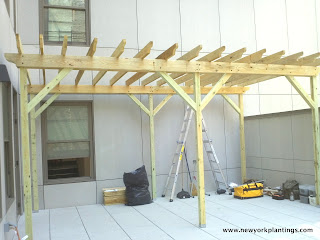 pergola in a rooftop