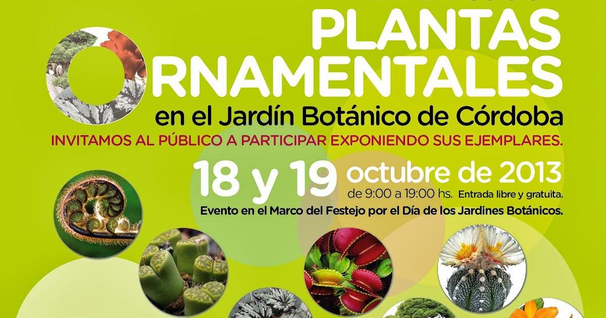 Jard n bot nico de c rdoba exposici n de plantas for Actividades en el jardin botanico