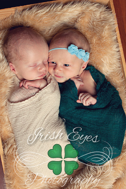 newborn twin photo