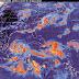 Once estados en alerta por tormenta Ernesto: Sinaproc