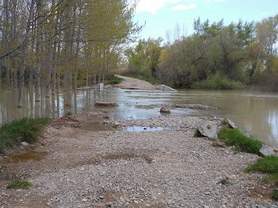 Camino Alfranca Ebro inunda