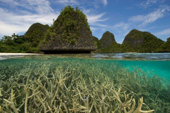 zhilong: Gambar Pemandangan Raja Ampat Papua Barat