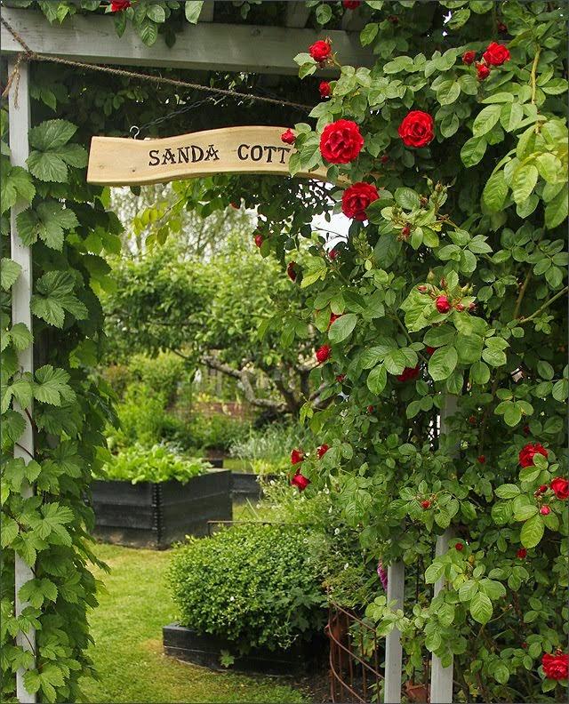 Anitas Blogg ...De fyra blomsterhaven skriver om Sanda Cottage: