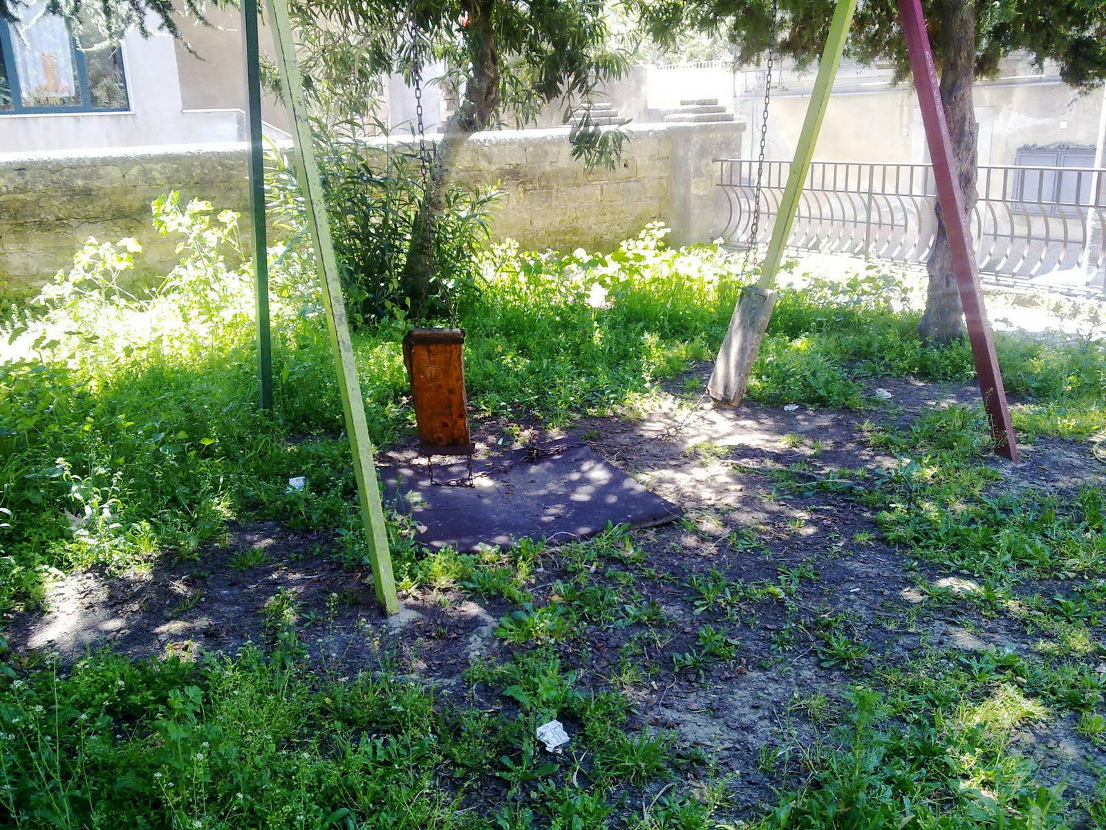 Agostino sella ma chi ha tagliato l 39 erba nel giardino - Quando seminare erba giardino ...