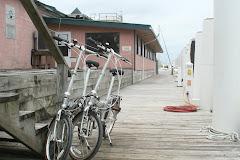 Shore Transportation