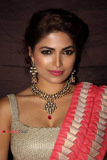 Parvathy Omanakuttan Pictures in Saree at Equine Racing Excellence Awards  0002