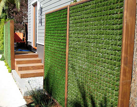 Decora el hogar jardines en las paredes de tu hogar for Jardines en paredes