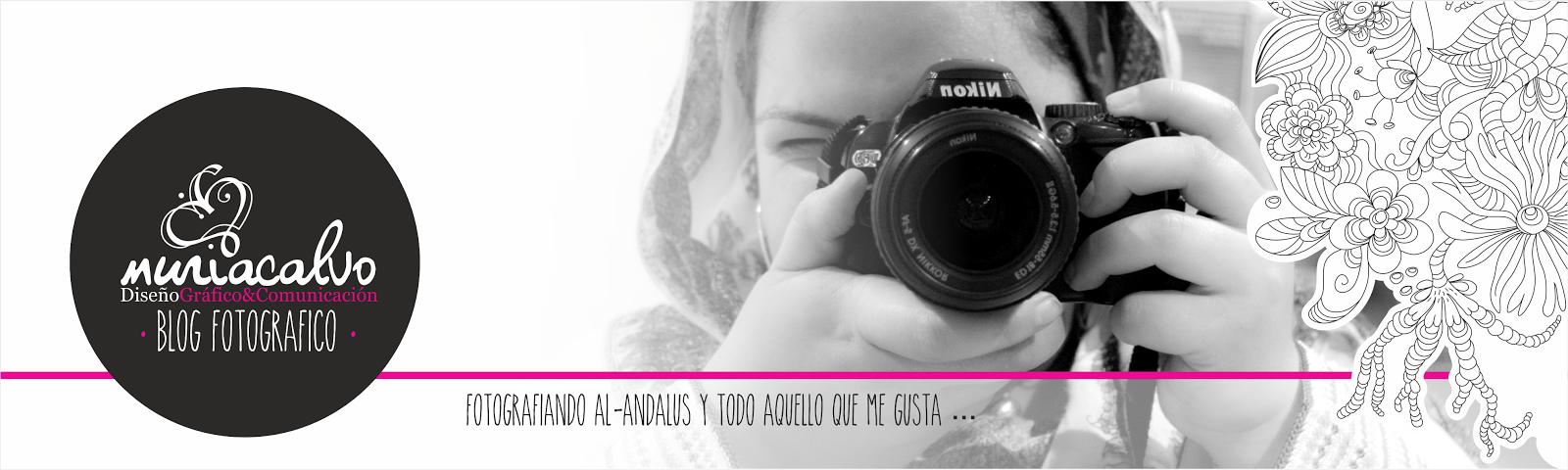 Blog Fotográfico Nur Calvo Giménez