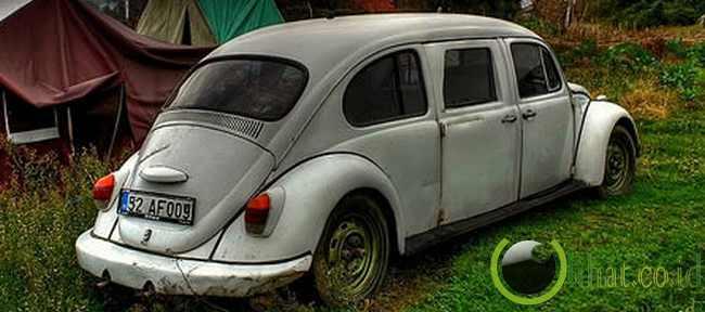 Beetle Limousine