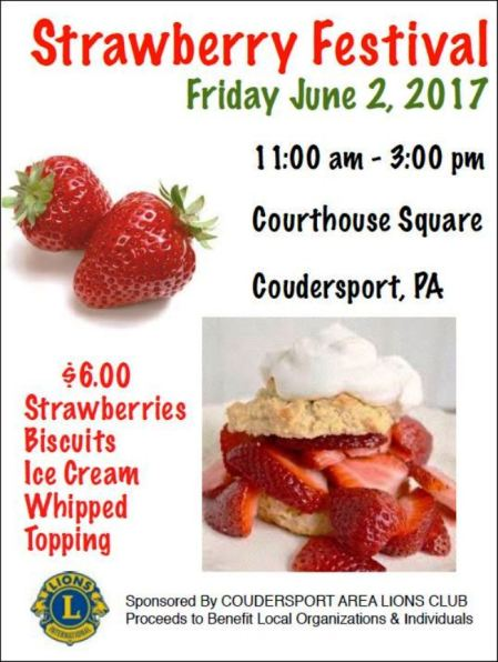 6-2 Strawberry Festival, Coudersport