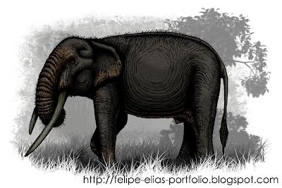gomphoteridae fosil Haplomastodon