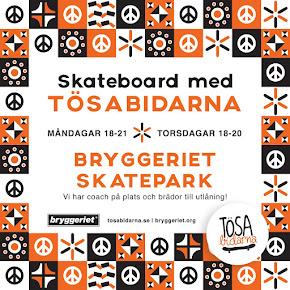 Skateboard med Tösabidarna