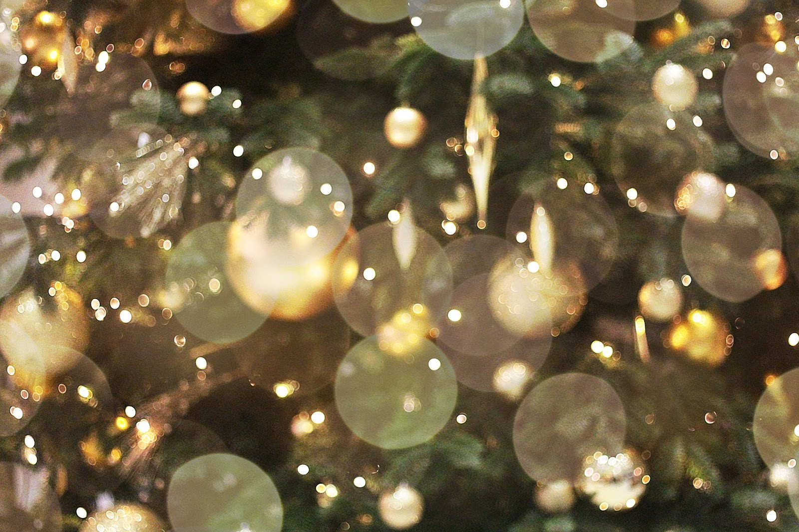 christmas tree bokeh photo