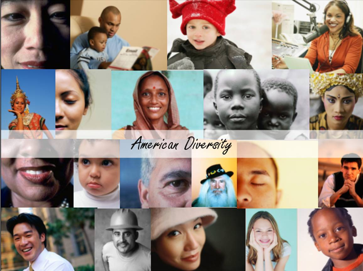 essays on diversity in america