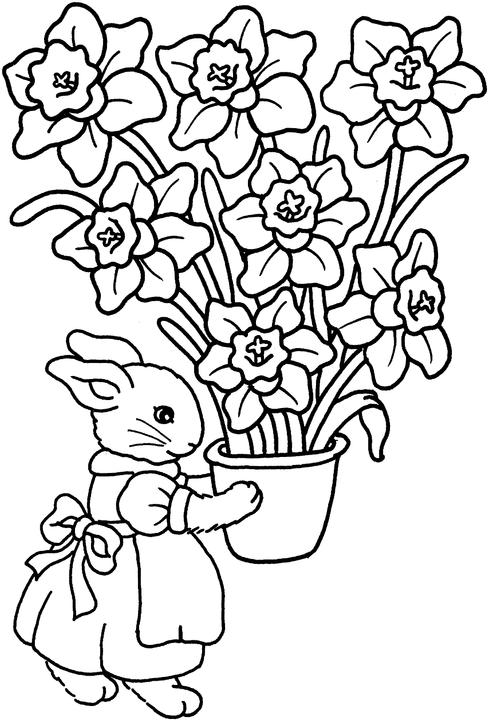 Easter Spring Coloring Pages