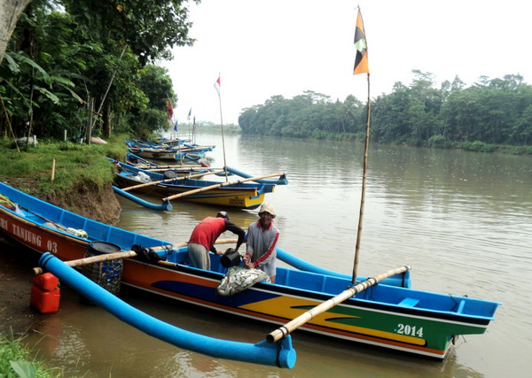 Ikan Seperti Menghilang Ungkap Nelayan Rowo