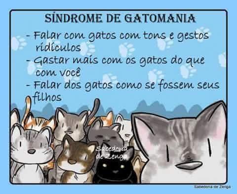 Sindrome de Gatomania