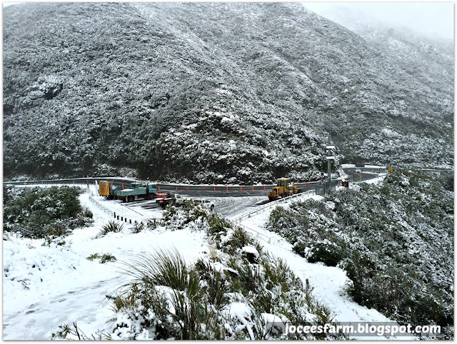 Snow in New Zealand  ||  joceesfarm.blogspot.co.nz