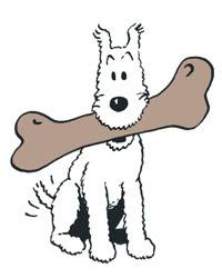 Tintin, Snowy, Dog, Bone, Chew, Gnaw, Begnaw,