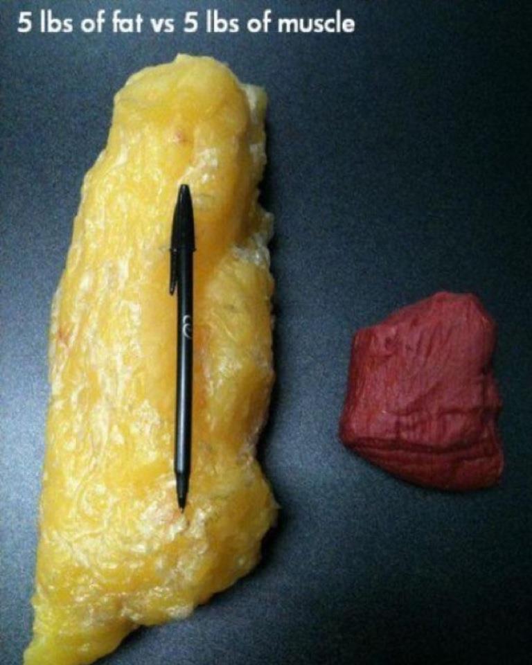 как жир на животе превратить в кубики