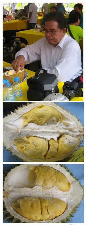 PESTA DURIAN