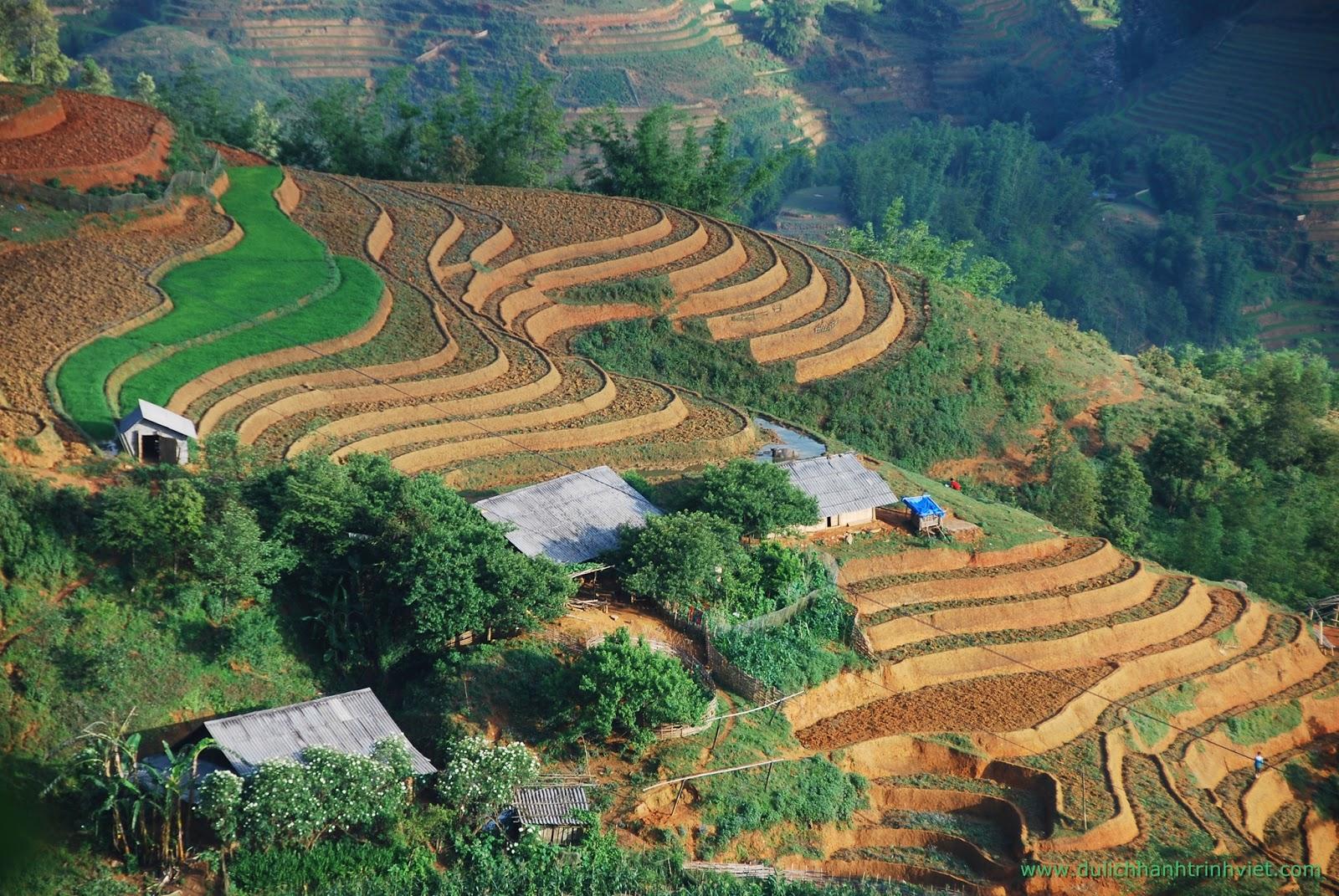 Khám phá vẻ đẹp ruộng bậc thang ở bản Tả Van - Lao Chải