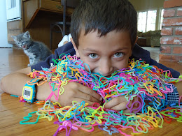 Silly Bandz headcount: 4,334