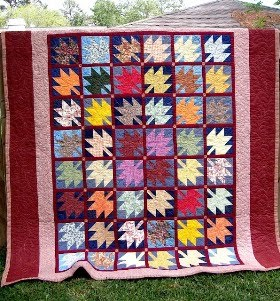 My Quilt Collection : It&#39;s A Family Affair