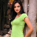 Sonal Chauhan Looks Extremely Sexy In Green Tight Shirt